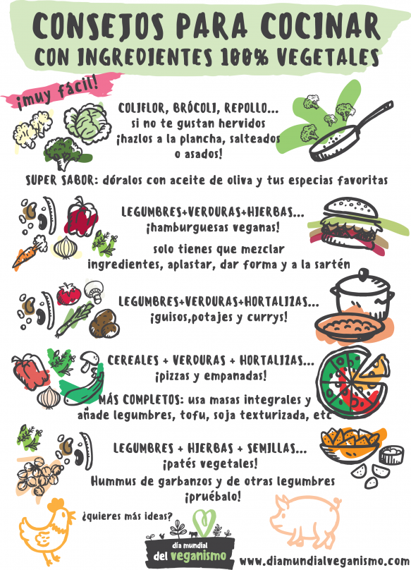 Consejos para cocinar con ingredientes vegetales